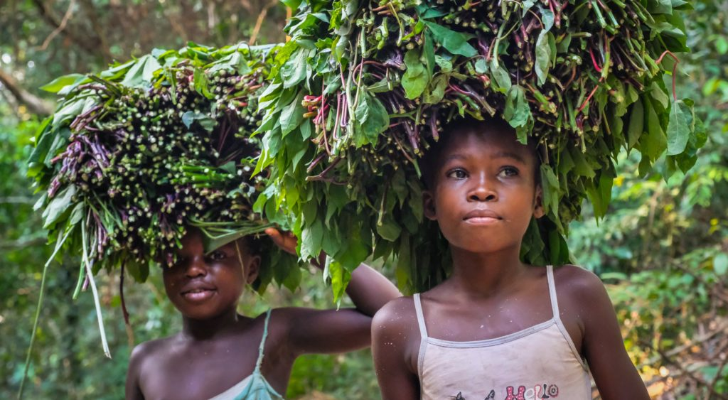 Girls carrying vegetables in Yangambi. Photo by Axel Fassio/CIFOR.
