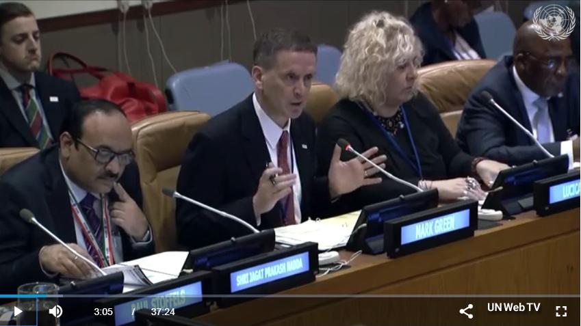 Ambassador Green at UN meeting
